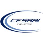 Cesari Industrie Logo